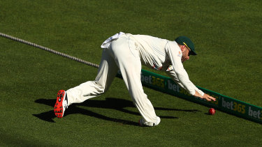 Matthew Wade appears to hurt his ankle in a fielding attempt.