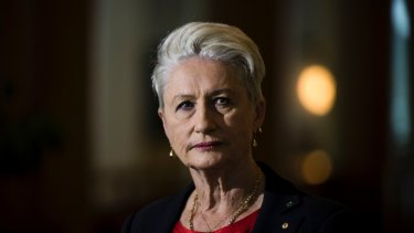 Independent MP Kerryn Phelps pushed for the King Cross injecting rooms and says the experience shows harm minimisation works.