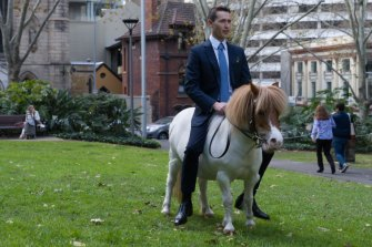 Tom Waterhouse rides his mother's Shetland Pony Brian in his new promotional video.