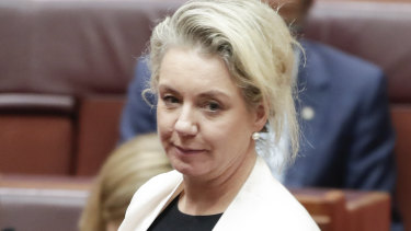 Senator Bridget McKenzie says changes made to a spreadsheet of sports grants were made without her approval.