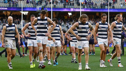 4 Points: Ignore the ladder, Cats are running out of lives