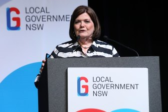 "NSW Minister for Local Government Shelley Hancock says not all property developers are ""evil""."