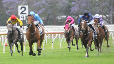 Seven races fill out the card at Warwick Farm.