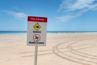 Cable Beach has been closed after the fatal shark attack.
