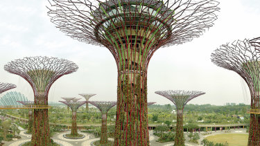 The unashamedly artificial Supertree Grove in Singapore, as portrayed in an exhibition at the NGV.