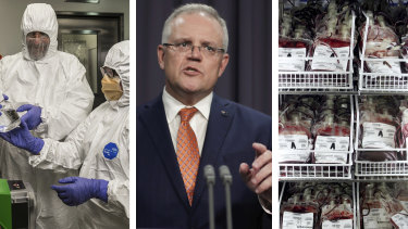 The Australian government's response plan to an impending coronavirus pandemic foreshadows fast-tracked vaccines and severe pressure on hospitals and blood banks.