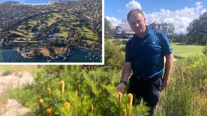 Royal Sydney Golf Club: Removal of trees will restore original coastal heathlands