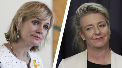 Zali Steggall wants national ICAC after sports rorts scandal