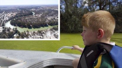 'World of hurt': Toxic blooms take over Lower Darling River as dam debate ramps up