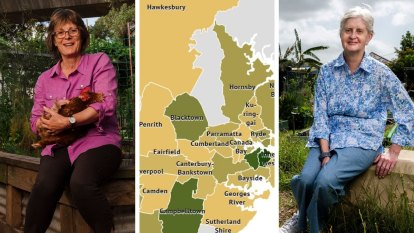 And then the pandemic came:  A tale of two community gardens