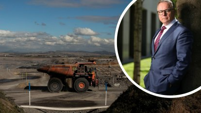 Fitzgibbon: Labor must set aside all opposition to coal mining to win byelection