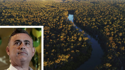 Barilaro turns to Labor for support on Murray national park logging