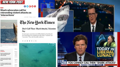 'Liberal lunacy': Shark bite language debate stirs up US media