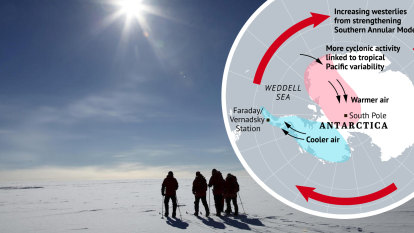 'Nowhere to hide': South Pole warms up with climate change a factor