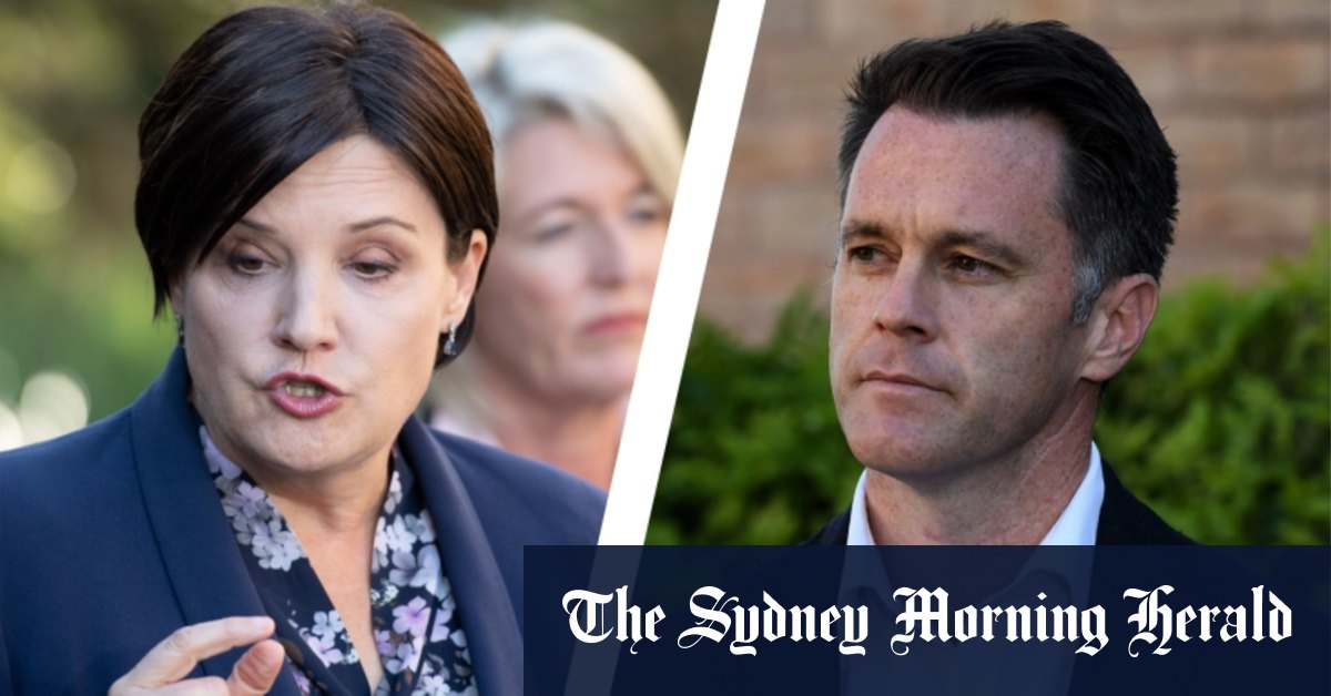 'Who are they going to do next?': Labor MPs furious over internal dirt sheet – Sydney Morning Herald