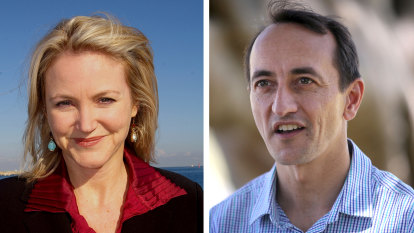 Former Labor MP sues Liberal MP Dave Sharma for defamation over tweet