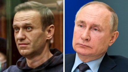 Navalny on brink of death as celebrities call on Putin to send a doctor