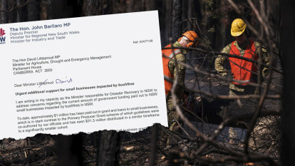 Bushfire relief for business, farms slows as politicians bicker over rules