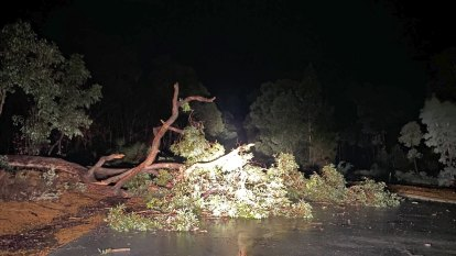 Storm wreaks havoc for Perth commuters with debris covering roads and train tracks