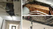 Residents in the Zetland block recount widespread outbreaks of dangerous mould and rotting carpet and floorboards.