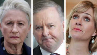 Can Labor under Anthony Albanese forge alliances with indepdendents like Kerryn Phelps and Zali Steggall.