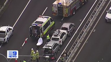 Some of the vehicles involved in the accident.