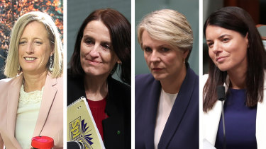 Katy Gallagher, Celia Hammond, Tanya Plibersek and Fiona Martin are among thoseurging anti-harassment training for MPs.
