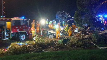 Emergency crews work to free a person from a car hit by a tree in Belgrave.