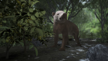 A rendering of the ancient Carsioptychus mammal     in a newly diversified forest, 300,000 years after the mass extinction that wiped out the dinosaurs.