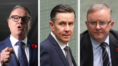 Labor's Joel Fitzgibbon has called on  Mark Butler to quit the energy portfolio, with the spat putting pressure on Labor leader Anthony Albanese.