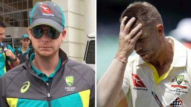 Dismissal: Steve Smith and David Warner have been stood down from their respective leadership roles.