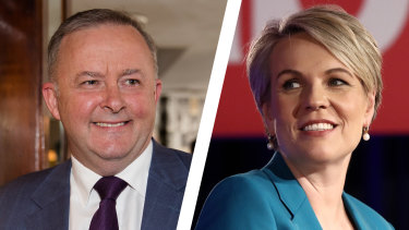 Anthony Albanese and Tanya Plibersek will both contest the Labor leadership.