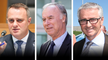 Coalition MPs Tim Wilson, John Alexander and Gerard Rennick all support government action tobring the soaring housing market under control.