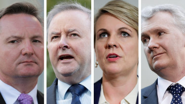 Chris Bowen, Anthony Albanese, Tanya Plibersek are likely Labor leadership contenders, while Tony Burke is said to be considering running.