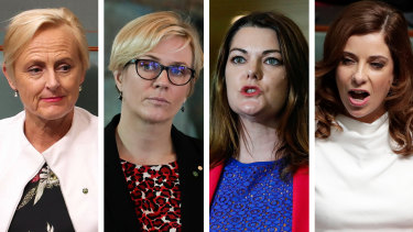 Liberal Katie Allen, independent MP Zali Steggall, the Greens' Sarah Hanson-Young and Labor's Anika Wells are supporting the establishmentof a group that could function as a forum for women in Parliament.