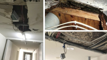 Residents in an abandoned Zetland block recount widespread outbreaks of dangerous mould and rotting carpet and floorboards.