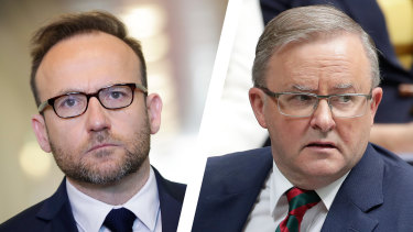 "The Greens' Adam Bandt said young Australians would see Anthony Albanese's comments as proof that both Labor and the Liberals were ""abandoning climate action""."