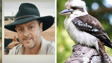 Daniel Welfare is accused of ripping off a kookaburra's head after it tried to steal food from his plate.