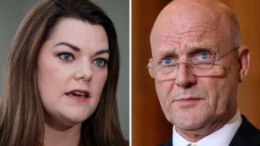 Sarah Hanson-Young is suing David Leyonhjelm for defamation in the Federal Court.