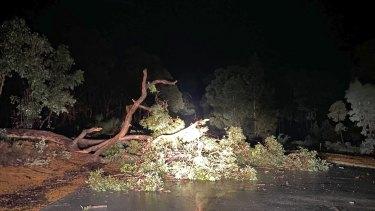 Winds brought trees down in Wundowie.