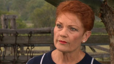 One Nation leader Pauline Hanson. Disaffected Labor voters are turning to her party to lodge their protest votes.