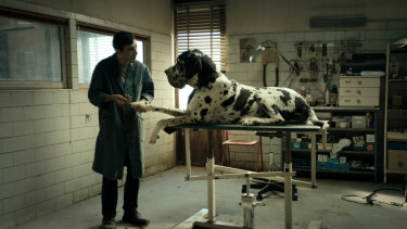 Marcello Fonte as the protagonist in Dogman.