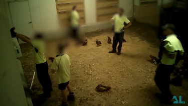 Secret vision taken inside a chicken farm has revealed animal cruelty.