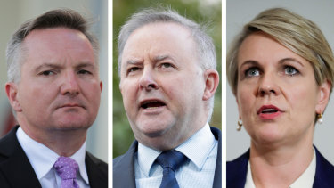 Chris Bowen, Anthony Albanese and Tanya Plibersek are Labor leadership contenders.