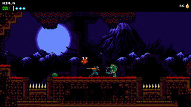 Fans of Ninja Gaiden will feel very much at home at the beginning of the game.
