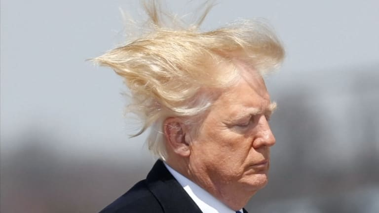 Auto Credit Of Virginia >> The answer to Trump's hair is blowing in the wind: it's real