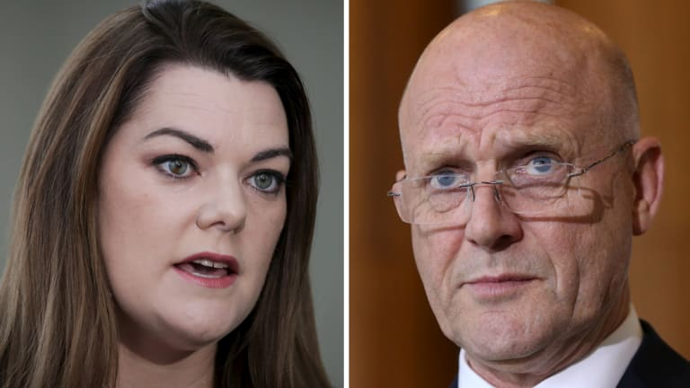 Sarah Hanson-Young says David Leyonhjelm hurled sexist abuse at her during a debate on violence against women.