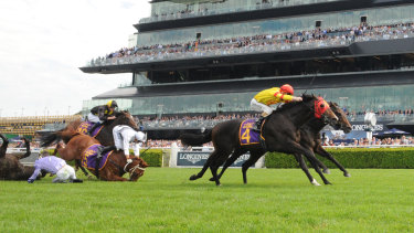 Backing up: David Payne will start both Persan and War Baron in the Champagne Stakes despite falls in last week's Fernhill Handicap.