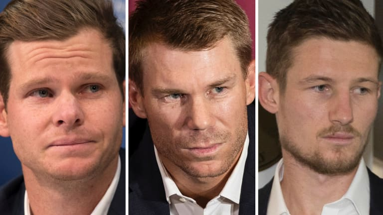 On the sidelines: Banned Australian cricketers Steve Smith, David Warner and Cameron Bancroft.