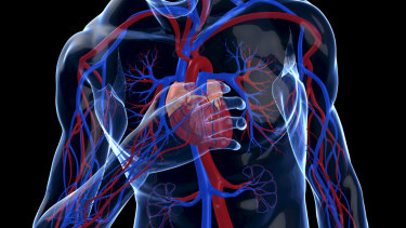 Researchers are using machine learning to diagnose heart attacks more quickly and accurately.